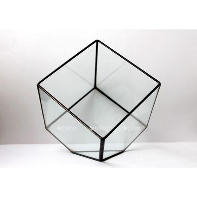 Флорариум «Куб»