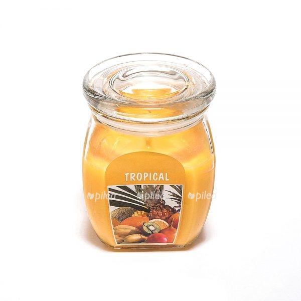 Свеча в стекле «Тропики»