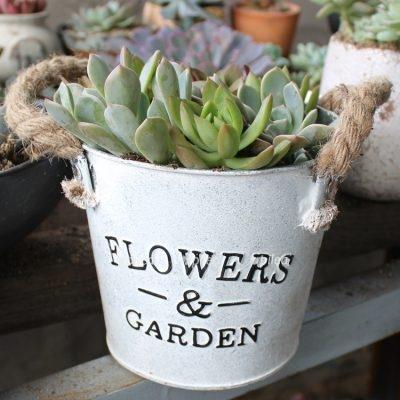Кашпо жестяное «flowerы&garden» микс