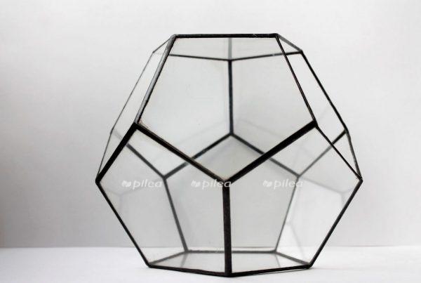 Флорариумгеометрический «Глоу», додекаэдр.