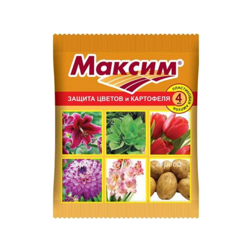 Защита ВХ «Максим»