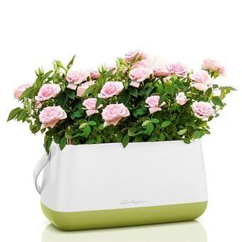 Купить Корзинка Lechuza для растений YULA