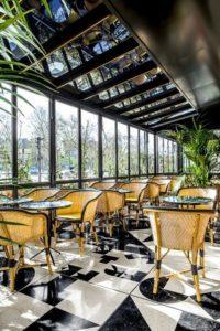 Растения для кафе и ресторанов