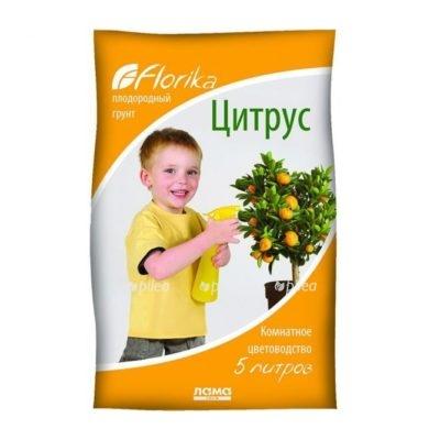 """Купить Грунт """"Florika"""" Цитрус"""